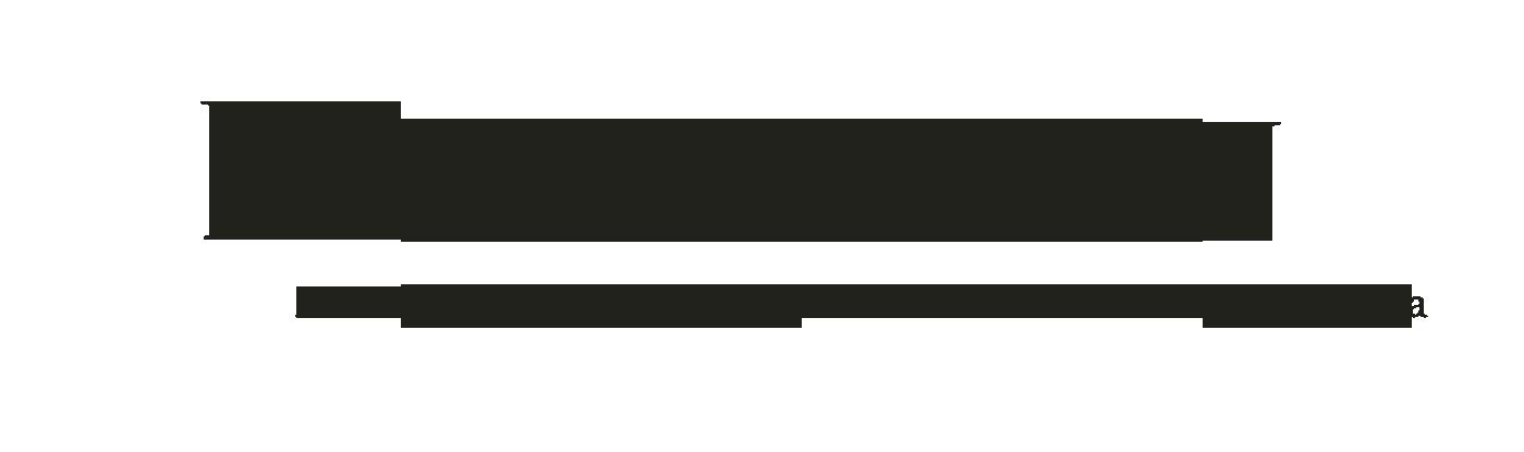 Linsalusen -